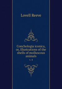 Conchologia iconica, or, Illustrations of the shells of molluscous animals: v. 4, Lovell Reeve обложка-превью