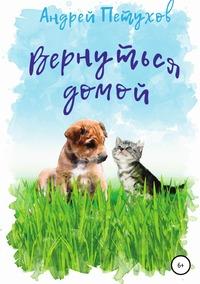 Вернуться домой, Андрей Петухов обложка-превью