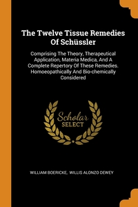 The Twelve Tissue Remedies Of Schüssler: Comprising The Theory, Therapeutical Application, Materia Medica, And A Complete Repertory Of These Remedies. Homoeopathically And Bio-chemically Considered, William Boericke, Willis Alonzo Dewey обложка-превью