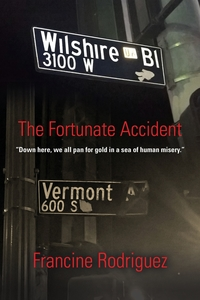 Книга под заказ: «The Fortunate Accident»