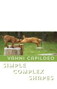 Книга под заказ: «Simple Complex Shapes»