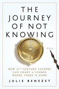 Книга под заказ: «The Journey of Not Knowing»