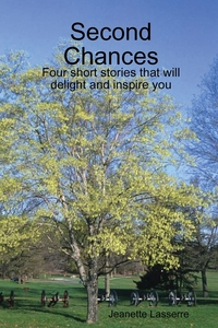 Книга под заказ: «Second Chances»