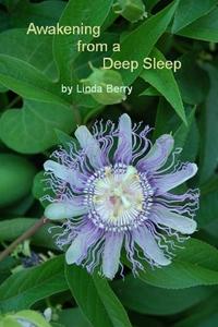 Книга под заказ: «Awakening From A Deep Sleep»