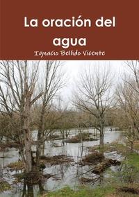 Книга под заказ: «La oración del agua»