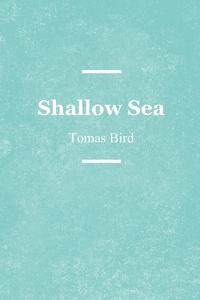 Книга под заказ: «Shallow Sea»