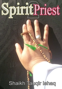 Книга под заказ: «Spirit Priest 2»