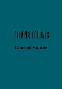 Книга под заказ: «Transitions»