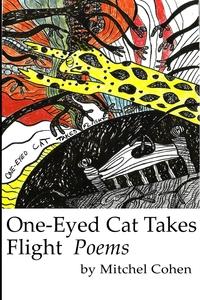 Книга под заказ: «One-Eyed Cat Takes Flight»