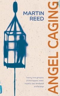 Книга под заказ: «Angel Caging»