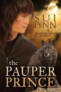 Книга под заказ: «The Pauper Prince»