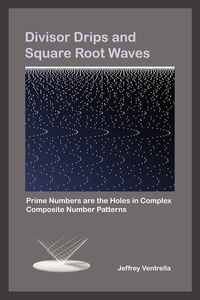 Книга под заказ: «Divisor Drips and Square Root Waves»