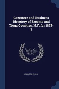 Gazetteer and Business Directory of Broome and Tioga Counties, N.Y. for 1872-3, Hamilton Child обложка-превью