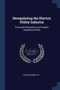 Книга под заказ: «Deregulating the Electric Utility Industry»