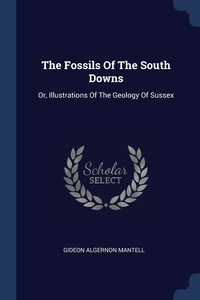 Книга под заказ: «The Fossils Of The South Downs»