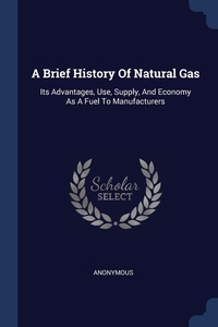 Книга под заказ: «A Brief History Of Natural Gas»