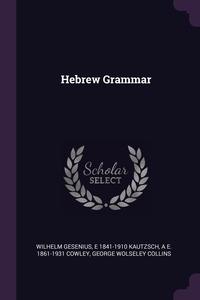 Hebrew Grammar, Wilhelm Gesenius, E 1841-1910 Kautzsch, A E. 1861-1931 Cowley обложка-превью