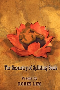 THE GEOMETRY OF SPLITTING SOULS, Robin Lim, 1st World Publishing, 1st World Library обложка-превью
